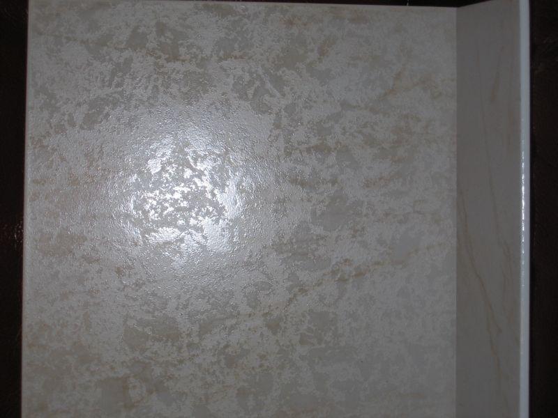 Le 11 janvier 2009 pose du carrelage notre maison phenix for Carrelage mural salon sejour